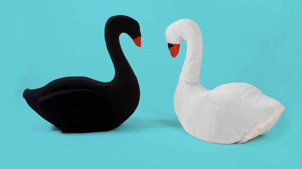Swan by Bryndís Bolladóttir